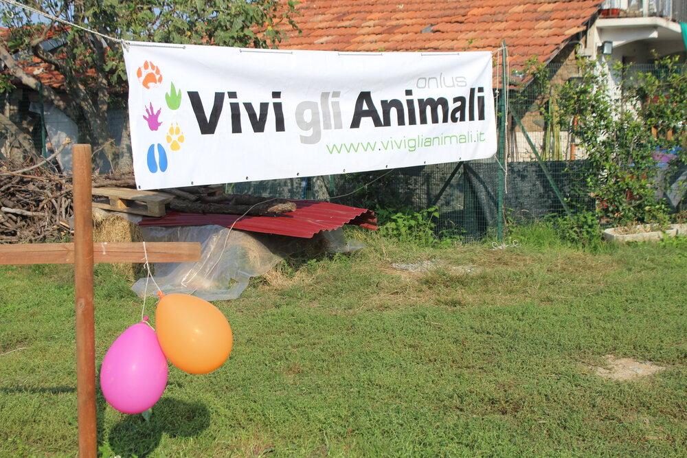sito di incontri di animali da fattoria ragazzi di bellaspetto dating online