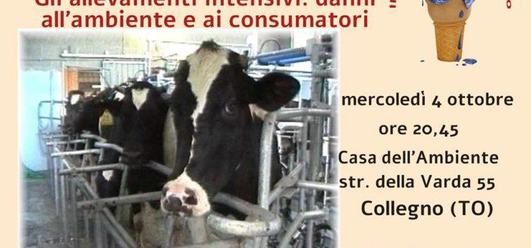 """VISIONE DEL DOCUMENTARIO """"LA FABBRICA DEGLI ANIMALI!"""""""